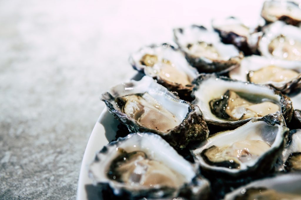 Oysters on a plate zinc food for hair growth